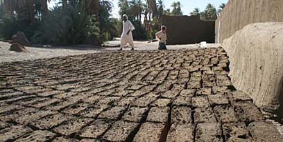 Mud-bricks laid out to dry next to the expedition house