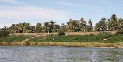 The island seen from the river Nile