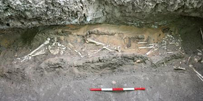 The coffin inside the burial niche of G216