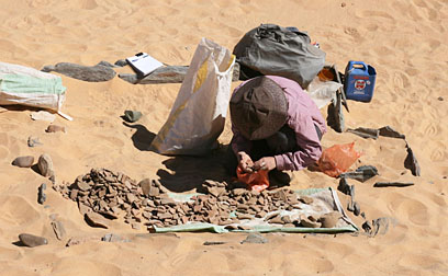 Marie Millet sorting pottery in the Ramesside town