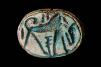 Scarab (F9490) of glazed steatite, found in Grave 201