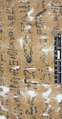 The text of the left hand column states the shroud owner's name (Ipu, daughter of Mutresti). © Norwich Castle Museum and Art Gallery / Trustees of the British Museum