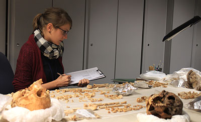 Working in the bioarchaeology laboratory in the Department of Ancient Egypt and Sudan, British Museum