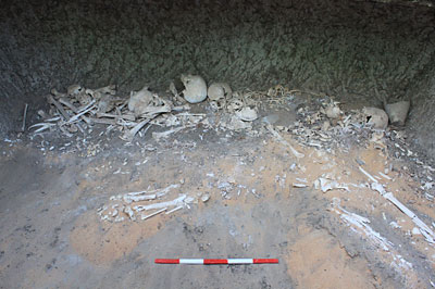 Commingled burials in Grave 234 at Amara West
