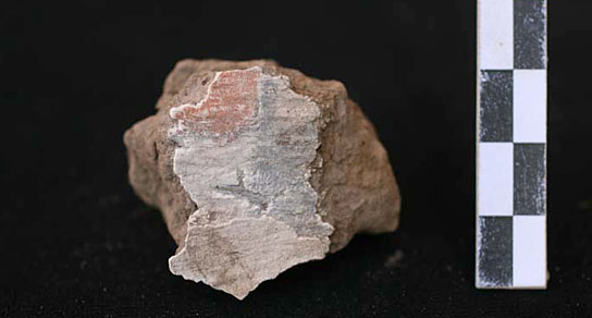 Fragments of painted plaster, with chequerboard pattern, from a possible shrine in house E13.7