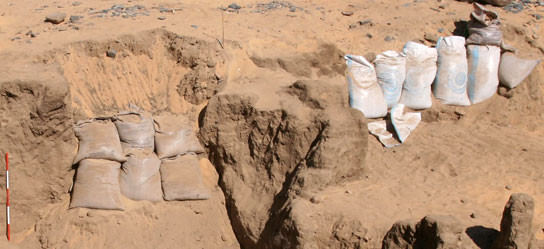 Sandbag engineering at Amara West