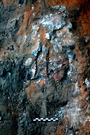 Painted plaster mask on a coffin lid, as revealed in G309.