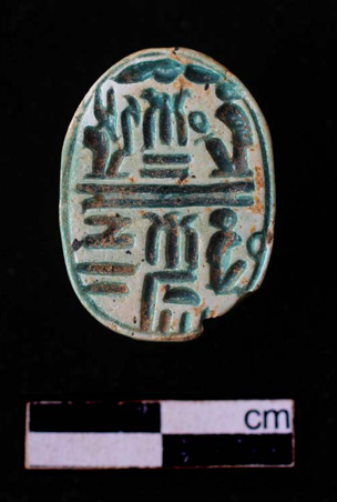 Glazed steatite scarab (F8365)