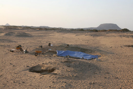 Excavation area – Due to the strong wind the graves had to be covered with tarpaulin for most of the season