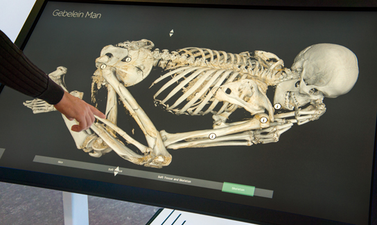 Exploring the scans of Gebelein Man on the interactive screen
