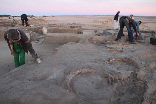 Brushing back the surface to reveal ancient ovens