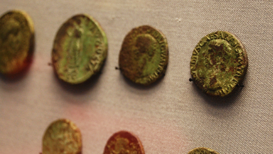 Coins from the hoard on display.
