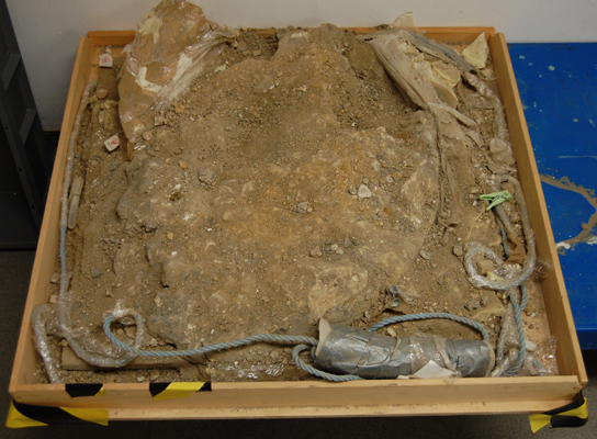 The soil block after excavation of the hoard and prior to dismantling and return to the archaeologists who carried out the excavation.