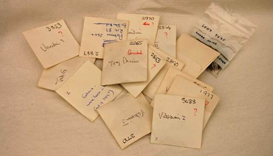 Envelopes containing initial coin finds associated with the Beau Street Hoard