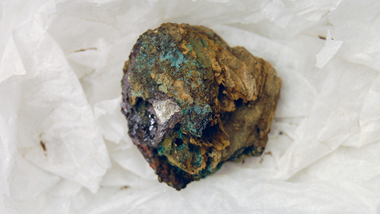Possible skin product preserved by corrosion products from the coin beneath.