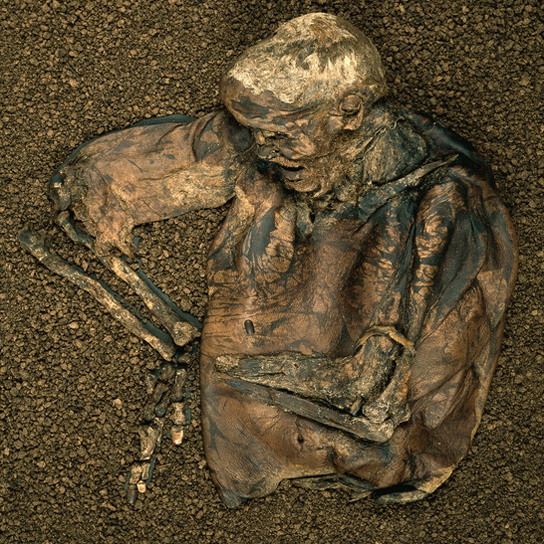 Lindow man, Mid-1st century AD, Cheshire, England, (BEP 1984,1002.1)
