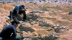 excavation at Jebel Sahaba