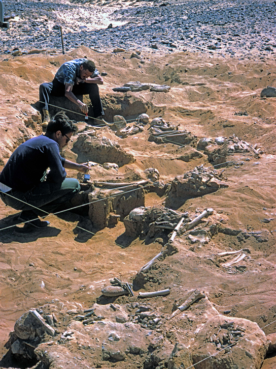 Excavations at Jebel Sahaba, 1965 (photo: Wendorf Archive, British Museum)