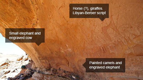 Rock shelter wall with multiple paintings and engravings of humans, cows, camels,  ostriches, giraffes, an elephant, Libyan-Berber script and unidentified quadrupeds. © TARA / David Coulson. 2013,2034.1563