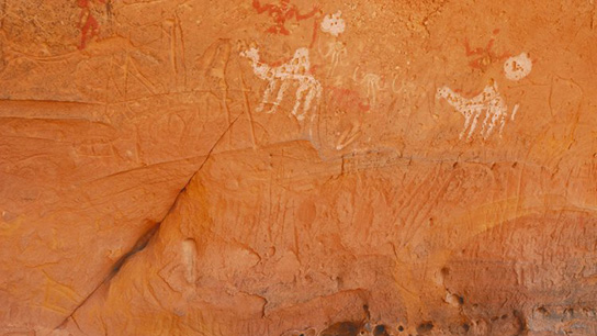 Engraved cow and antelope hoofprints. © TARA / David Coulson 2013,2034.1572