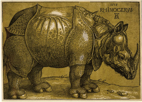 Albrecht Durer, Rhinoceros, colour woodcut, first published 1515, this edition after 1620 (1877,0609.71)