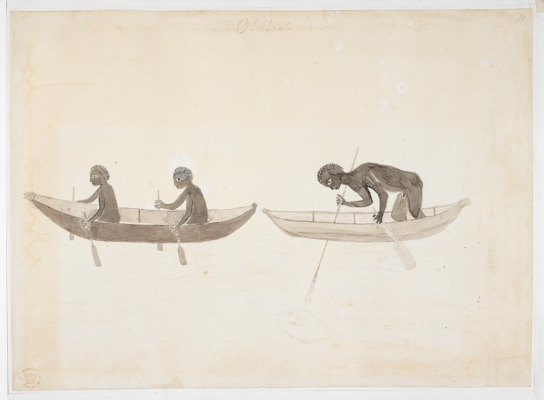 People in canoes at Botany Bay by Tupaia, 1770. H 263 mm, W 362 mm. British Library, London