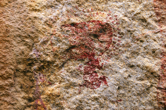 Painting of a seated figure with a large headdress, apparently surrounded by insects – possibly bees. From near Thawi, Kondoa, Tanzania. (Photograph © TARA/David Coulson – image not yet catalogued)