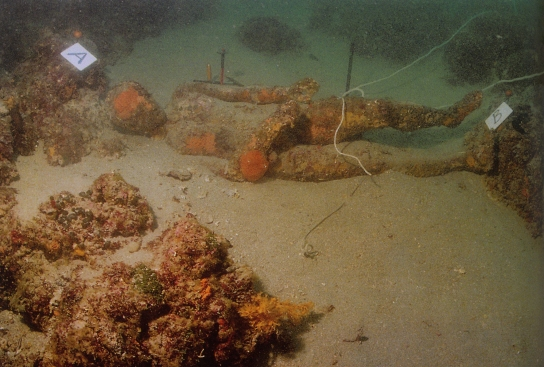 The statue lying on the seabed where it was discovered © Mr Danijel Freka