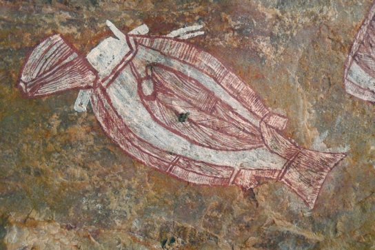X-ray style rock art depiction of a cooked barramundi, Injalak Hill.